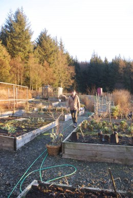 Feb. 2010 in the Kitchen Garden