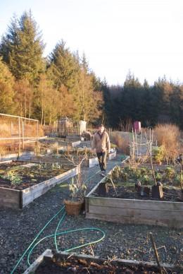 Feb. 2010 in the Kitchen Garden