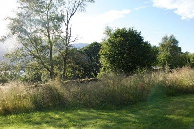 Woodland Garden looking over Old Man of Coniston