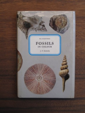 Fossils in Colour