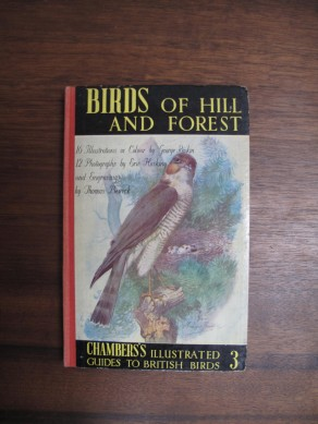 Birds of Hill and Forest