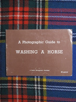 A Photographic Guide to Washing a Horse