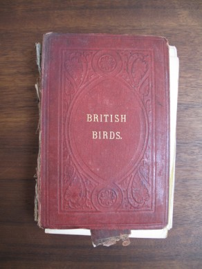 British Birds Vol. 3