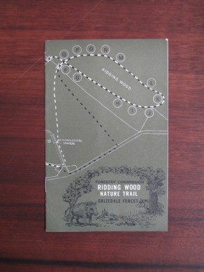 Forestry Commission, Grizedale Forest: Ridding Wood Nature Trail