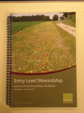 Entry Level Stewardship